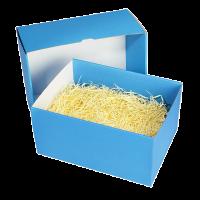 Karton blau mit Füllmaterial