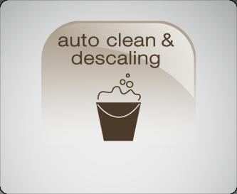 Auto Clean & Descaling
